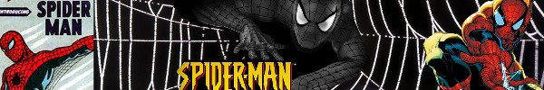 The History of the Spider-man
